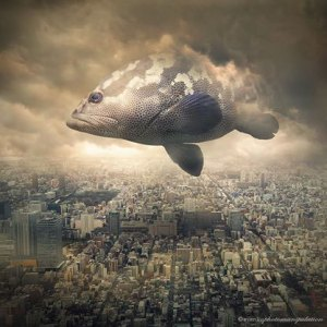 fish-Surreal-animals-Photo-Manipulations-by-EvenLiu
